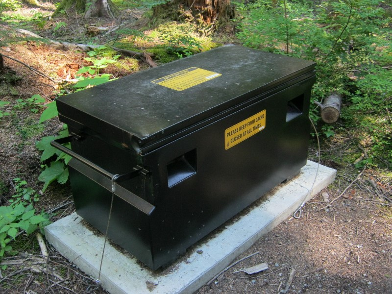 Bear-proof food cache at Cal-Cheak forestry site