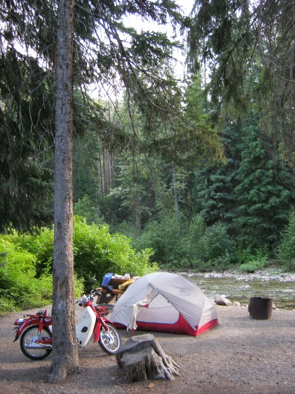 Symba at Manning Park campsite